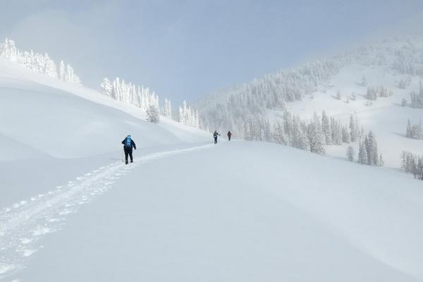 Skiing to Dunraven Pass