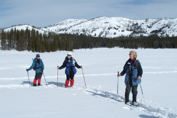 Snowshoers at the Canyon Area